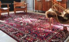 Nettoyer du pipi de chien sur tapis à saint Cloud